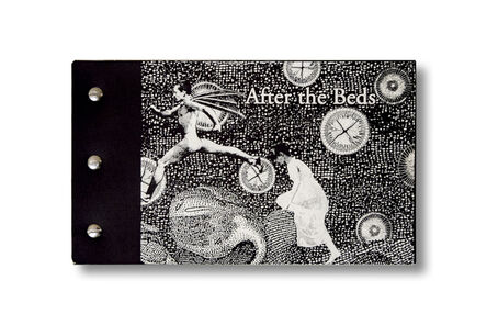 Stacey Steers, 'Before the fall/After the Beds'