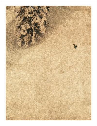 John Huggins, 'Aspen #18', 2014