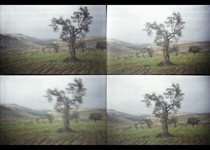 Rula Halawani, 'Untitled 1, Irrational Series', 2003