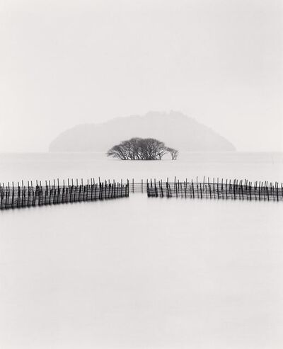 Michael Kenna, 'Submerged Trees, Kohoku, Honshu, Japan', 2002