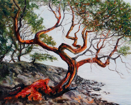 Terrill Welch, 'Arbutus Tree in the fog St. John Point', 2018
