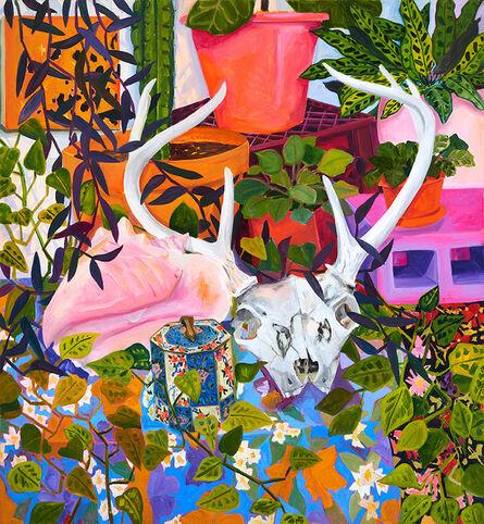 Anna Valdez, 'Deer Skull in Studio', 2017