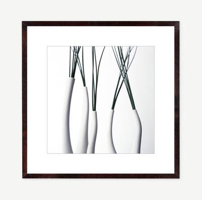 Vivienne Foley, 'Sedge in Funnel Neck Vases', 1996