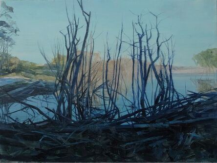 Nicholas Blowers, 'Savage Pond II Study', 2018