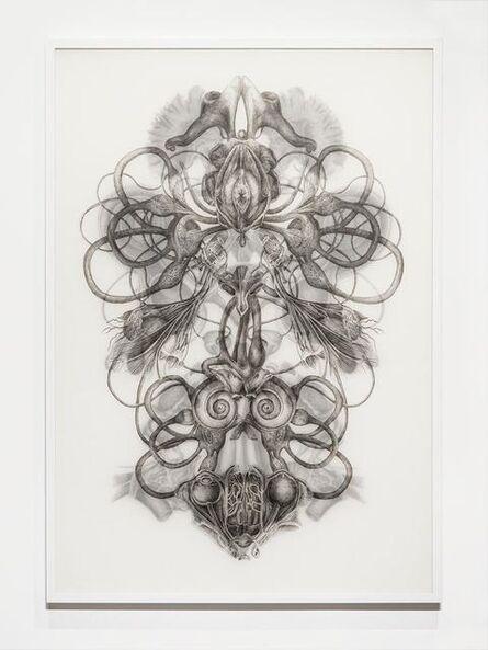 Angela Su, 'Rorschach Test No.1', 2016
