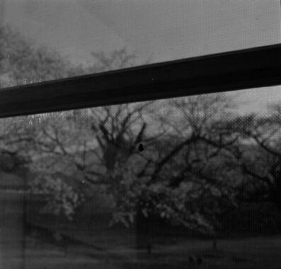 Toshio Enomoto, '034 - La Ruche at Musée Kiyoharu Shirakaba. A window and a ladybug', 2007