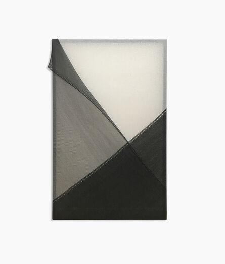 Kapwani Kiwanga, 'PEEL (black and white)', 2019