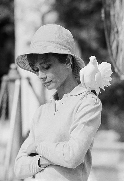 Terry O'Neill, 'Audrey Hepburn Dove', 1967