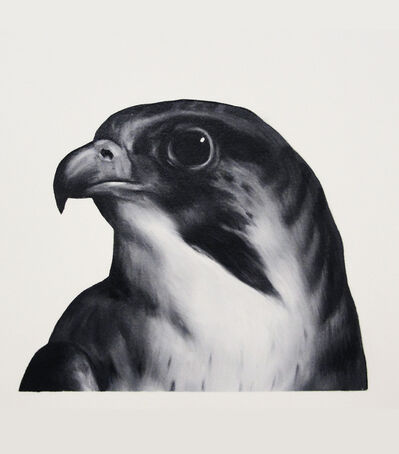 Shelley Reed, 'Falcon (after Landseer)'