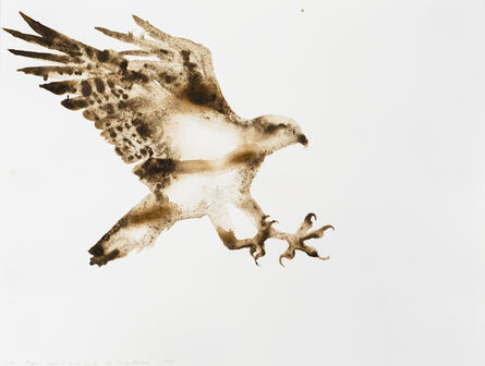 Alexis Rockman, 'Osprey (Pandion haliaetus)', 2014