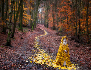 Kirsty Mitchell, 'The Journey Home', 2012