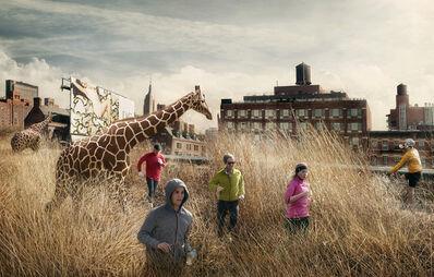 Marcelo Tinoco, 'High Line 1 (from the series Histórias Naturais)', 2012