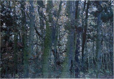 Azade Köker, 'Blue Forest 2', 2017