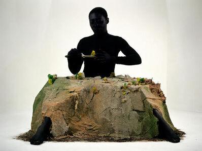 Otobong Nkanga, 'Alterscapes : Playground ', 2015