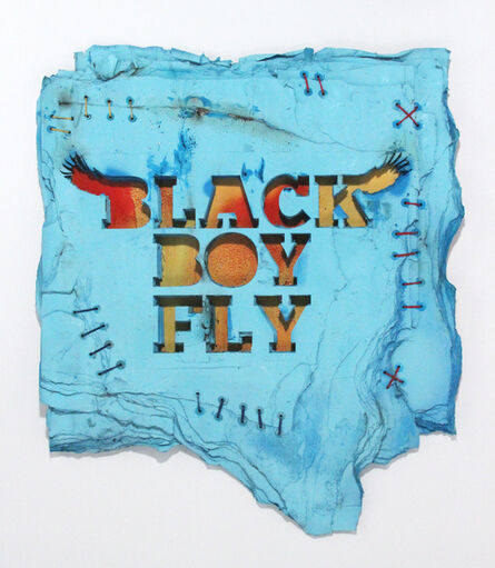 Robert Hodge, 'Black Boy Fly', 2016