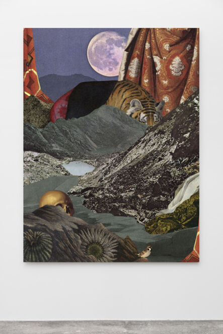 Jakob Kolding, 'Gråspurven (The House Sparrow)', 2017