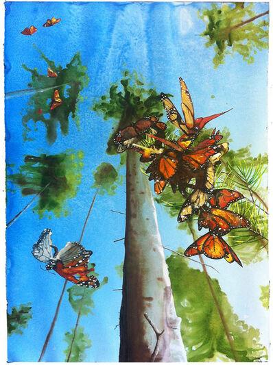 Alexis Rockman, 'Untitled (Monarchs)', 2013