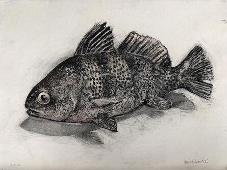 John Alexander, 'Black Drum Fish', 2014