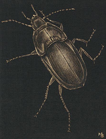 Margot Glass, 'Large Beetle', 2020