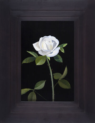 Michael Gregory, 'Untitled (Rose) ', 2015