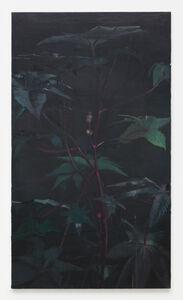 Joris Ghekiere, 'Untitled', 2010