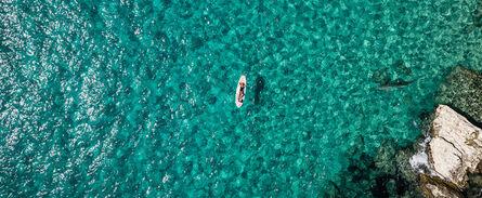 Cecile Plaisance, 'Long On A Paddle & Shark', 2021