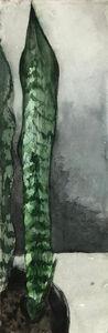 Eduardo Berliner, 'Plantas [Plants] III', 2020