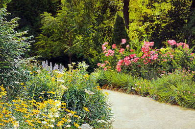 Jeffrey Vaughn, 'Garden Path', 2017