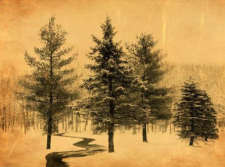 Joyce Tenneson, 'Brook in Snow'