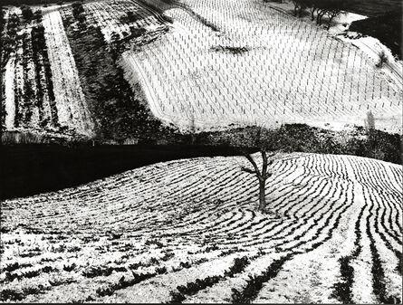 Mario Giacomelli, 'Paesaggio 283', 1968