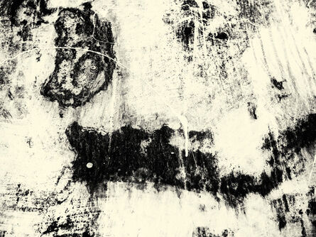 Irene Greenberg, 'Untitled 2011, #8'