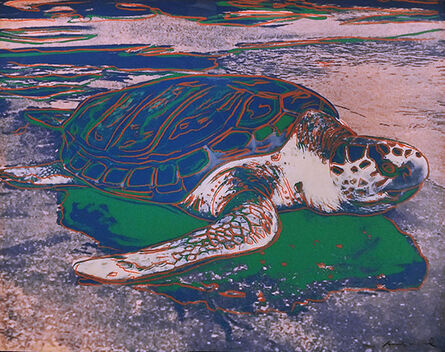 Andy Warhol, 'ENDANGERED SPECIES: TURTLE FS II.360 BY ANDY WARHOL', 1985