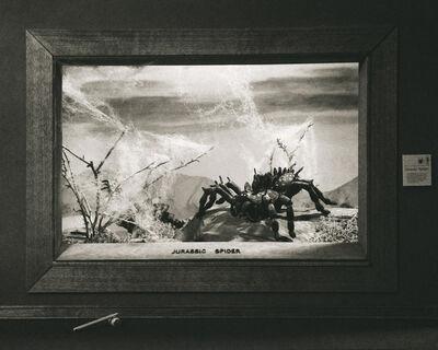 Lori Nix and Kathleen Gerber, 'Jurassic Spider', 2009