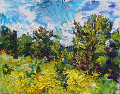 Ulrich Gleiter, 'Wide Open Land', 2017