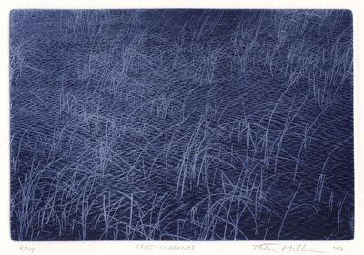 Peter Miller, 'Cross-Currents', 2003