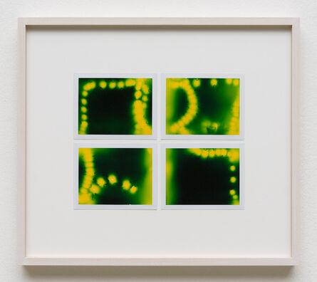 Peter Miller, 'Photuris #28', 2013