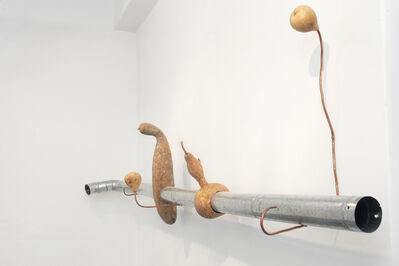 Sol Pipkin, 'Mundo sonoro en el interior de un zapallo', 2014