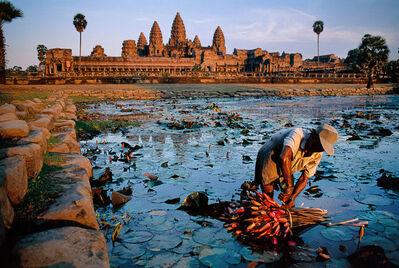 Steve McCurry, 'Lotus Gatherer, Cambodia', 1997