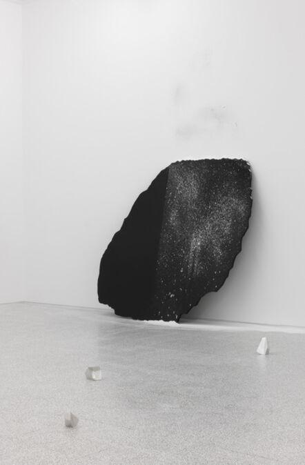 Gianni Caravaggio, 'Immagine seme', 2011