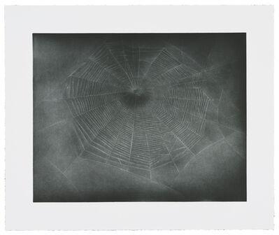 Vija Celmins, 'Untitled (Web 3)', 2002
