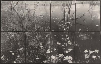 """Koichiro Kurita, '""""Leaves in Dark"""" Ipswich River, MA', 2015"""