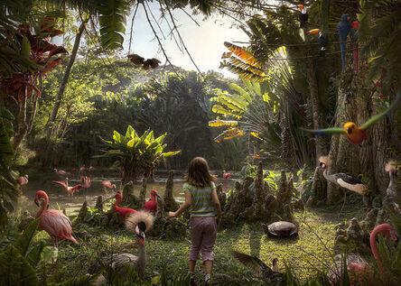 Marcelo Tinoco, 'Diorama Rio (from the series Histórias Naturais)', 2013