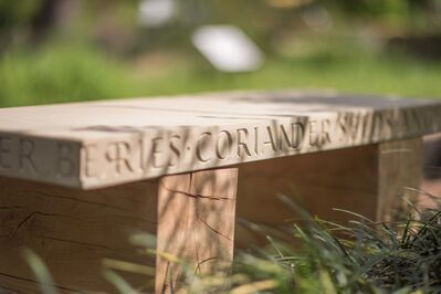 Lois Anderson, 'Gin & Tonic Bench'