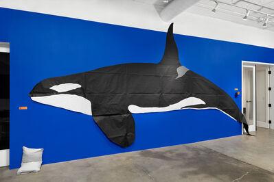 Nina Katchadourian, 'Whale', 2020