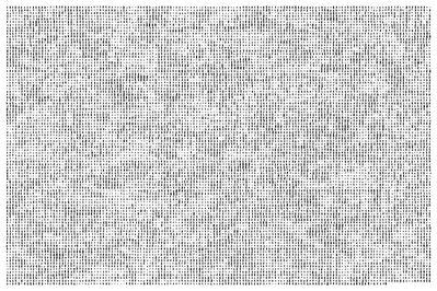Robert Zhao Renhui, 'Trying to Remember a Tree 2', 2016