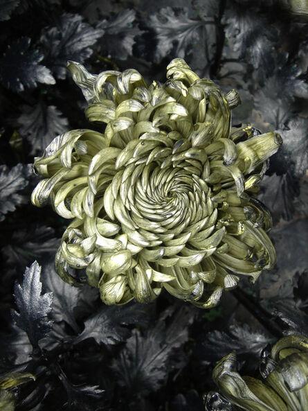 Jennifer Wen Ma 马文, 'In Furious Bloom III', 2016