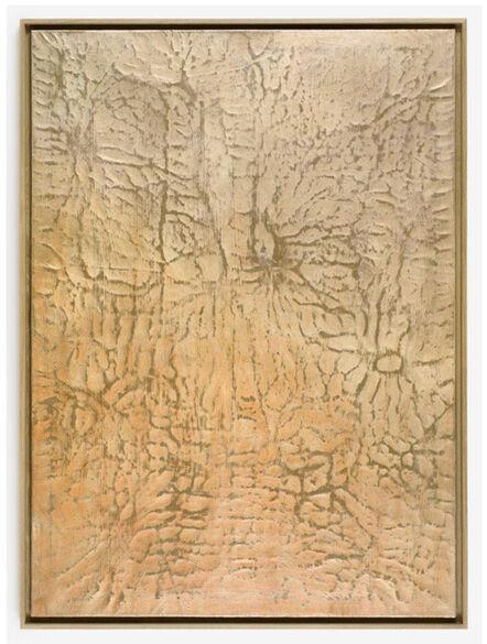 Paul Czerlitzki, 'Flesh Out', 2016