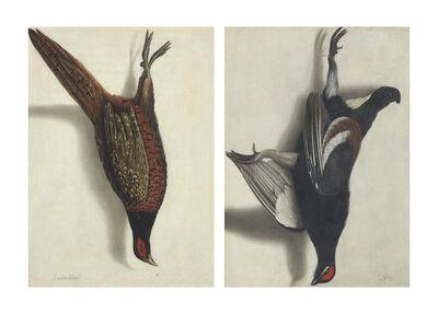 Cornelis Biltius, 'A trompe l'oeil of a hanging pheasant; and A trompe l'oeil of a hanging black grouse'