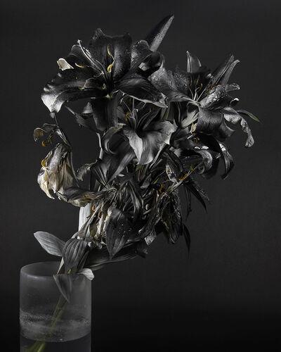 Stephanie Syjuco, 'Blackout (Krylon ColorMaster Gloss Black on White Oriental Lilies Sprayed Gloss White)', 2019