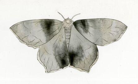 Jim Holyoak, 'Emerald Moth Cut Out 1', Unknown